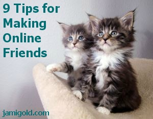 Kittens with text: 9 Tips for Making Online Friends