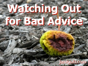 Rotten apple on the ground with text: Watching Out for Bad Advice
