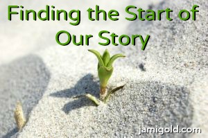 Plant sprouting with text: Finding the Start of Our Story