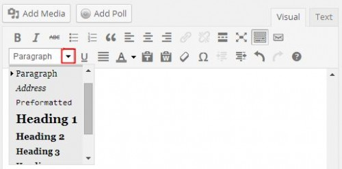 WordPress formatting options