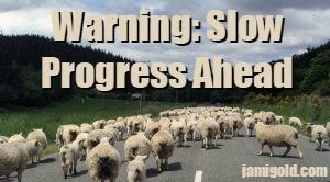 Sheep blocking a road with text: Warning: Slow Progress Ahead