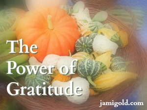 Harvest basket of colorful decorative gourds with text: The Power of Gratitude