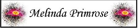 Melinda Primrose's blog banner