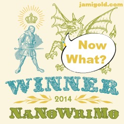 NaNo Winner badge with text: Now What?