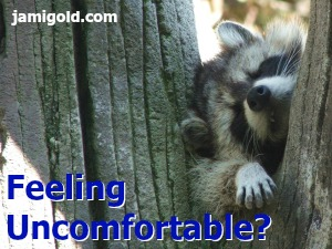 A raccoon looking stuck in a tree with text: Feeling Uncomfortable?
