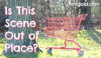 Shopping cart in the woods with text: Is This Scene Out of Place?