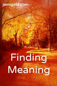 Path through autumn leaves with text: Finding Meaning