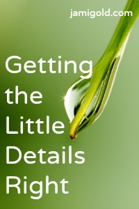 Close up of a water drop on a leaf with text: Getting the Little Details Right