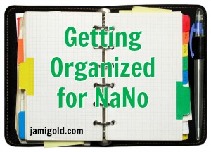Open organizer with text: Getting Organized for Nano