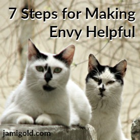 Cat with narrowed eyes watching cat on perch with text: 7 Steps for Making Envy Helpful