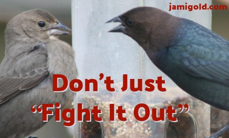 "Birds fighting at a bird feeder with text: Don't Just ""Fight It Out"""