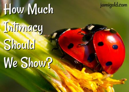 Ladybugs mating on a flower with text: How Much Intimacy Should We Show?