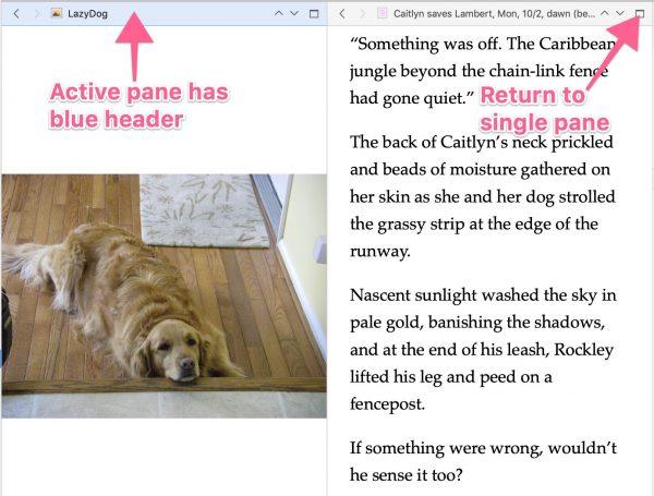 Screenshot showing a split screen effect