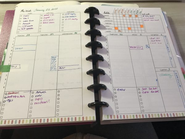 View of discbound planner