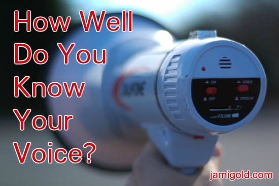Close up of a megaphone with text: How Well Do You Know Your Voice?