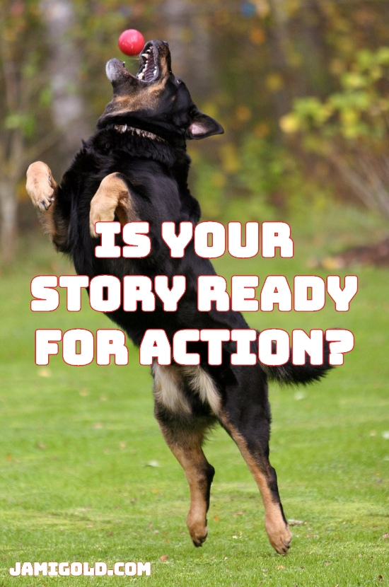 Dog jumping to catch ball with text: Is Your Story Ready for Action?
